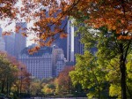 Autumn_in_Central_Park_New_York_Wallpaper_n0yw5